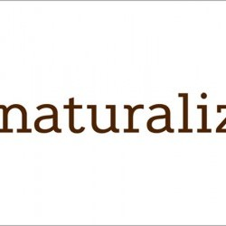 Coupon for: Champlain place - NATURALIZER - Extra 20% off